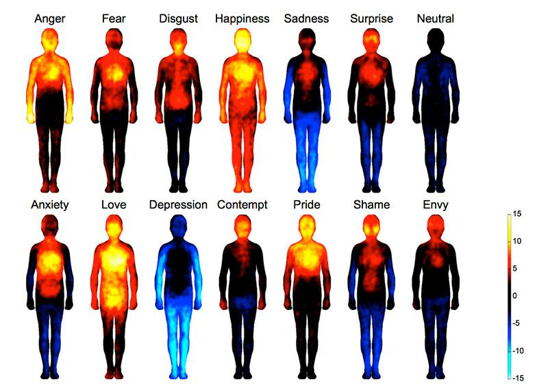 Bodily Map of Emotions