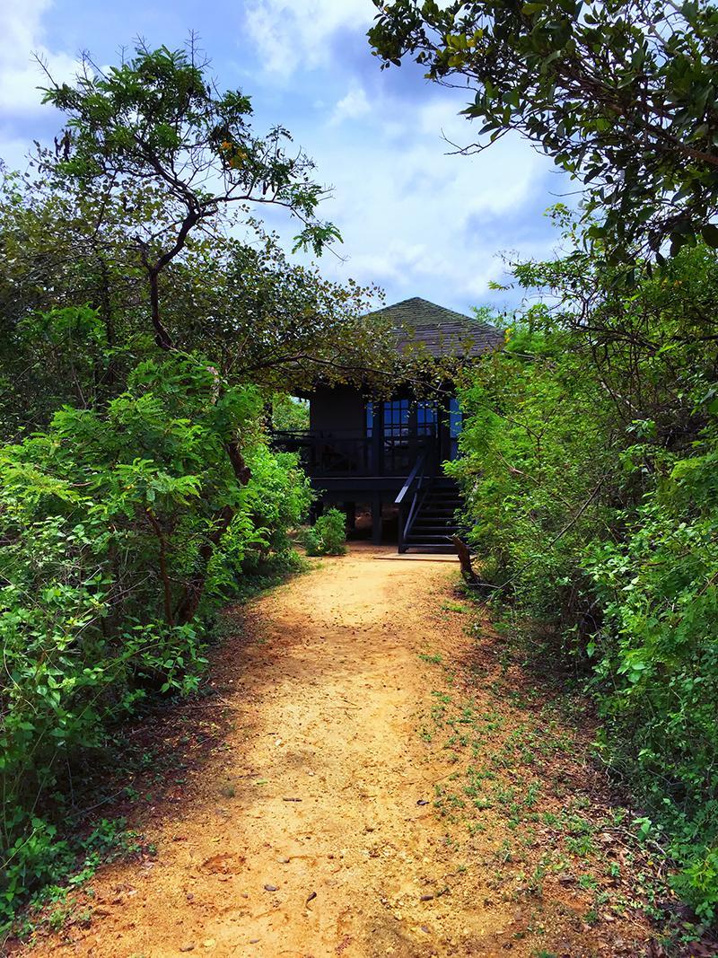 The Rooms (Cottages) At The Cinnamon Wild, Yala, Sri Lanka.