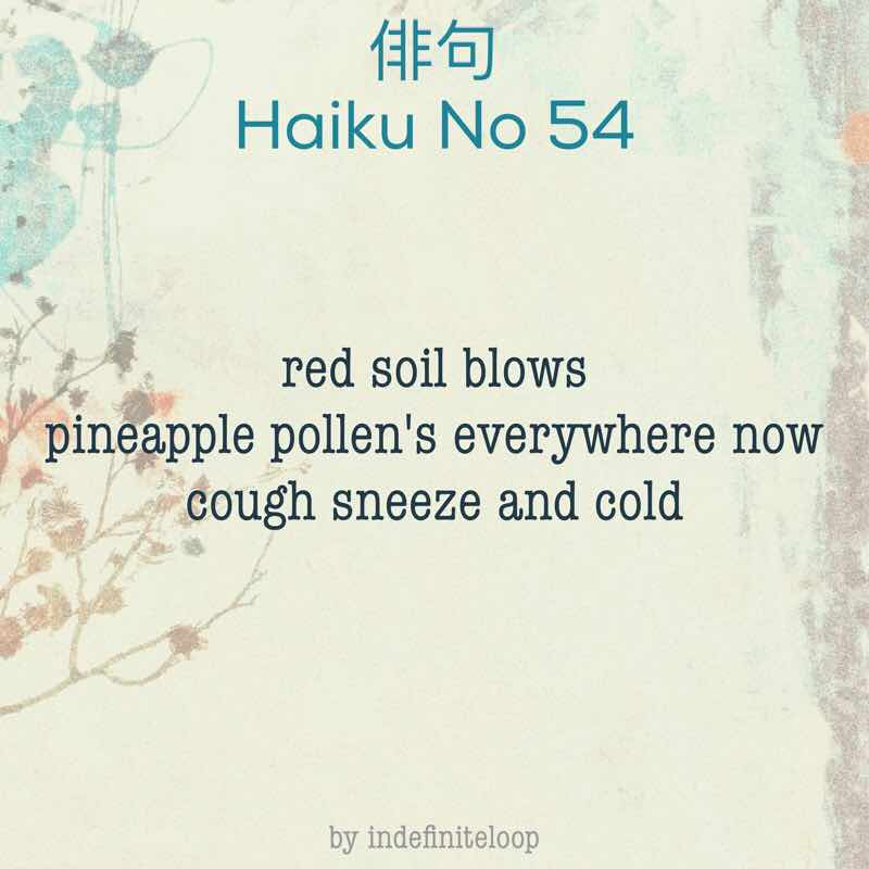 indefiniteloop.com - Haiku No. 54 - Pineapple Pollen.