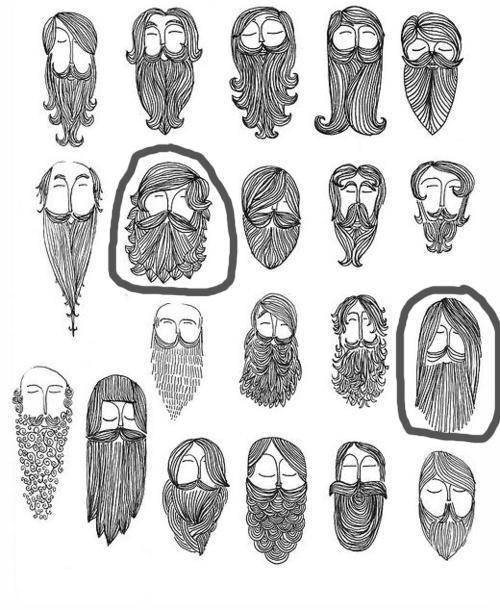 Here's where my beard is headed